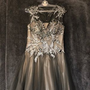 Chapmagne and Grey Evening Gown